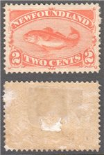 Newfoundland Scott 48 Mint VF (P256)