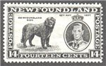 Newfoundland Scott 238 Mint F (P13.7)