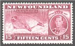 Newfoundland Scott 239 Mint F (P13.7)