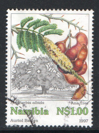 Namibia Scott 850 Used