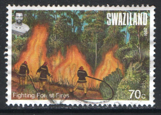 Swaziland Scott 702 Used