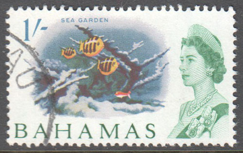 Bahamas Scott 213 Used