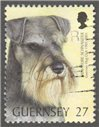Guernsey Scott 737 Used