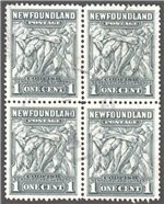 Newfoundland Scott 253var Used VF Block