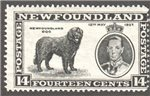 Newfoundland Scott 238 Mint F (P14.1)
