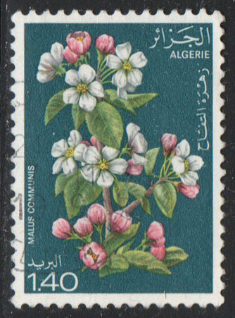 Algeria Scott 610 Used
