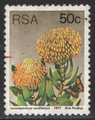 South Africa Scott 489 Used