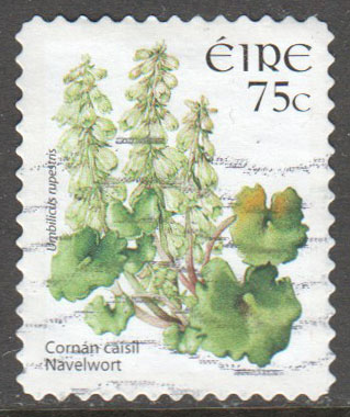 Ireland Scott 1655 Used