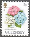 Guernsey Scott 477 Used