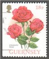 Guernsey Scott 584a Used