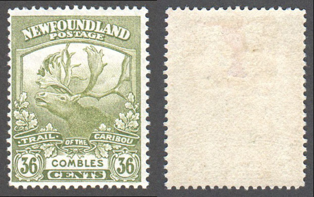 Newfoundland Scott 126 Mint F (P13.9) (P) - Click Image to Close